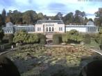 Archived image Webcam Wilhelma, moorish garden 04:00