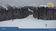 Archived image Webcam Filzmoos - Papageno Top Station 16:00