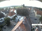 Archived image Webcam Stork Nest on top of the Town Hall of Jettingen-Scheppach 12:00