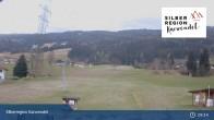 Archiv Foto Webcam Hoferlift am Kolsassberg 03:00