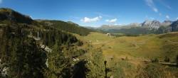 Archived image Webcam Arosa Bear Sanctuary 10:00