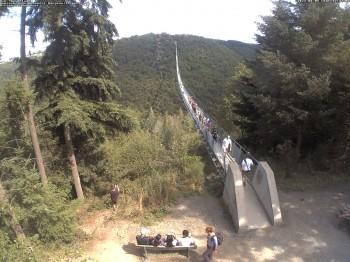 Hängebrücke Geierlay bei Mörsdorf