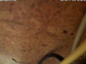 passau webcam